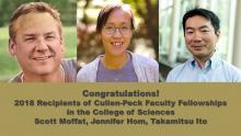 2018 Cullen-Peck Fellows