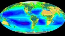 Earth's biosphere (Courtesy of Wikimedia)